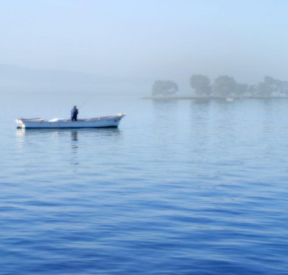 島根県環境基本計画他2計画策定業務('10 島根県) - 島根県が改定する、環境基本計画、循環型社会推進計画と、新たに策定する地球温暖化対策実行計画の策定を支援しました。3つの計画を1年間で策定することができました。