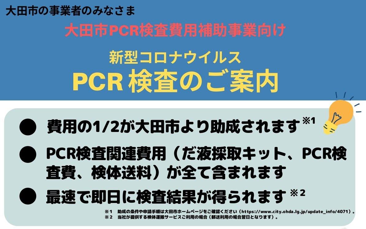 検査 いくら pcr