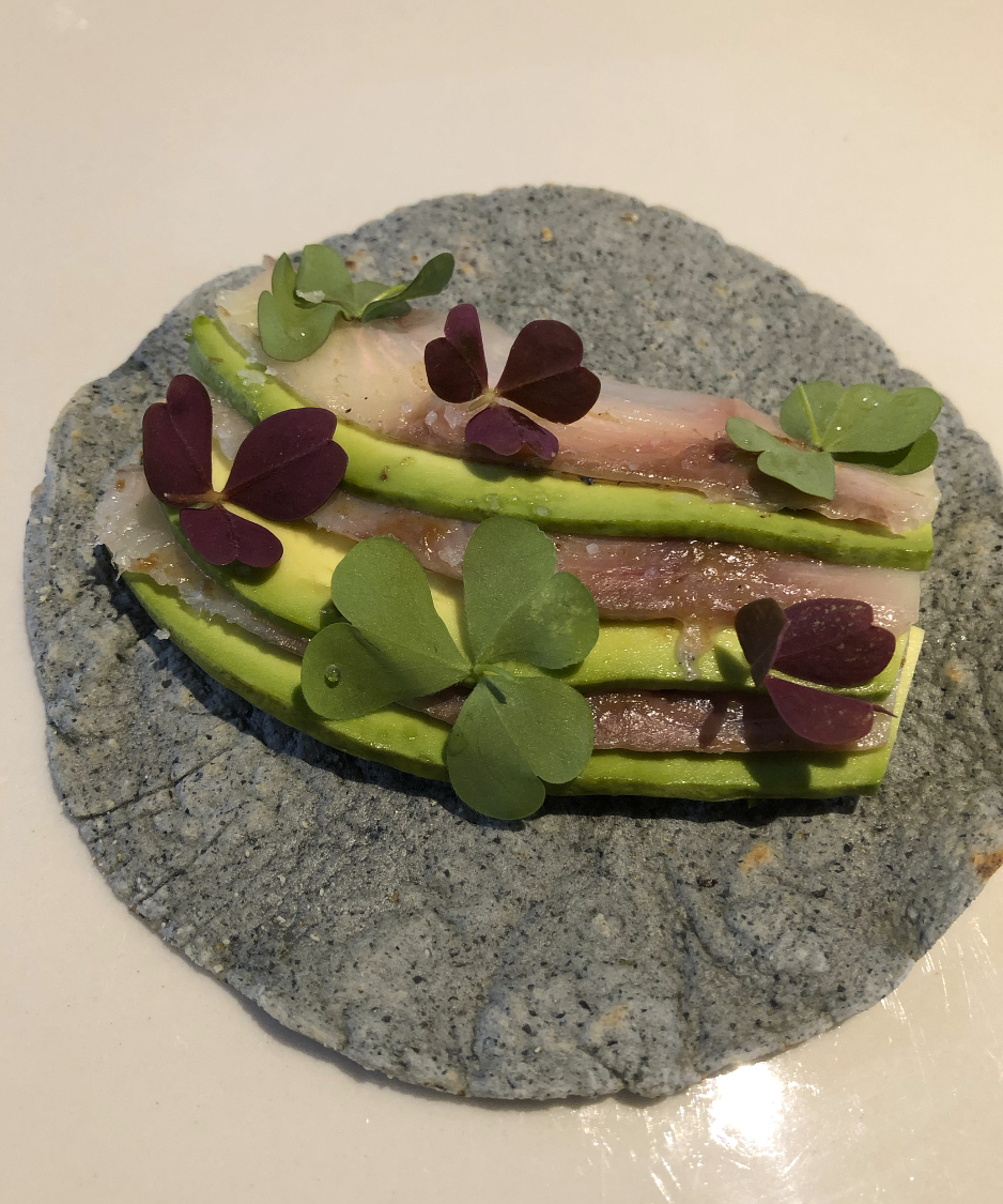 Kampachi taco w/ avo
