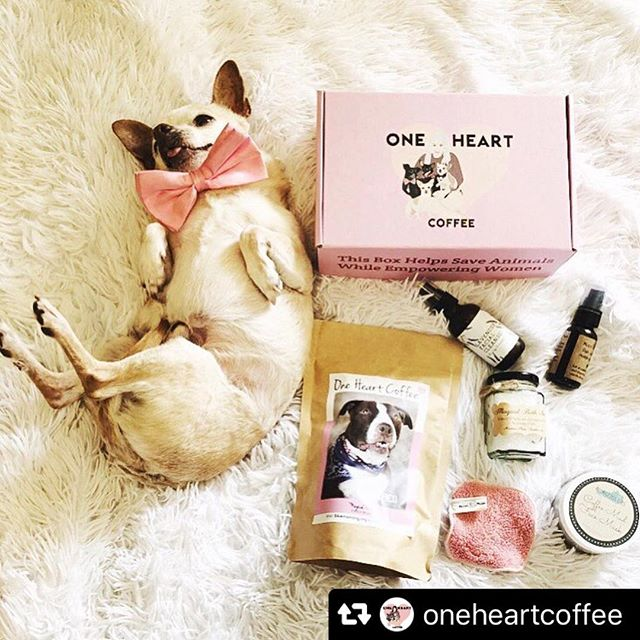 Cutie pie overload!! 🐶 Thank you for including our lavender facial wash in your subscription box 💕@oneheartcoffee #Repost @oneheartcoffee with @repostsaveapp · · ·  Honestly Mood AF.👅 . . Peek inside our April box no longer available. May boxes are almost sold out! Remember boxes don't get restocked once they're gone they're gone. You can only order a box for a limited time. Subscribe to our monthly option to never miss out. Link in bio to grab yours. They also make perfect mother's day gifts! We also have lots of goodies in our shop. Portion of all proceeds get donated back to rescue. ☕️💕🐶#oneheartcoffee (www.oneheartcoffee.net)