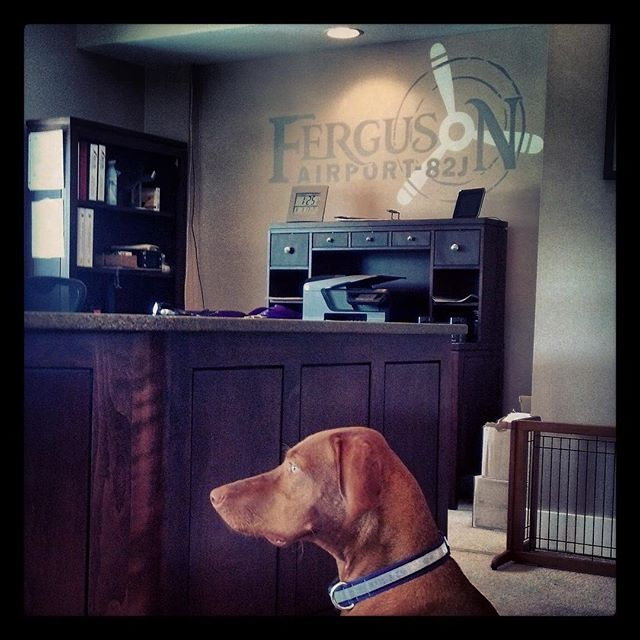 Here at Ferguson Airport, we love the four legged friends as well!