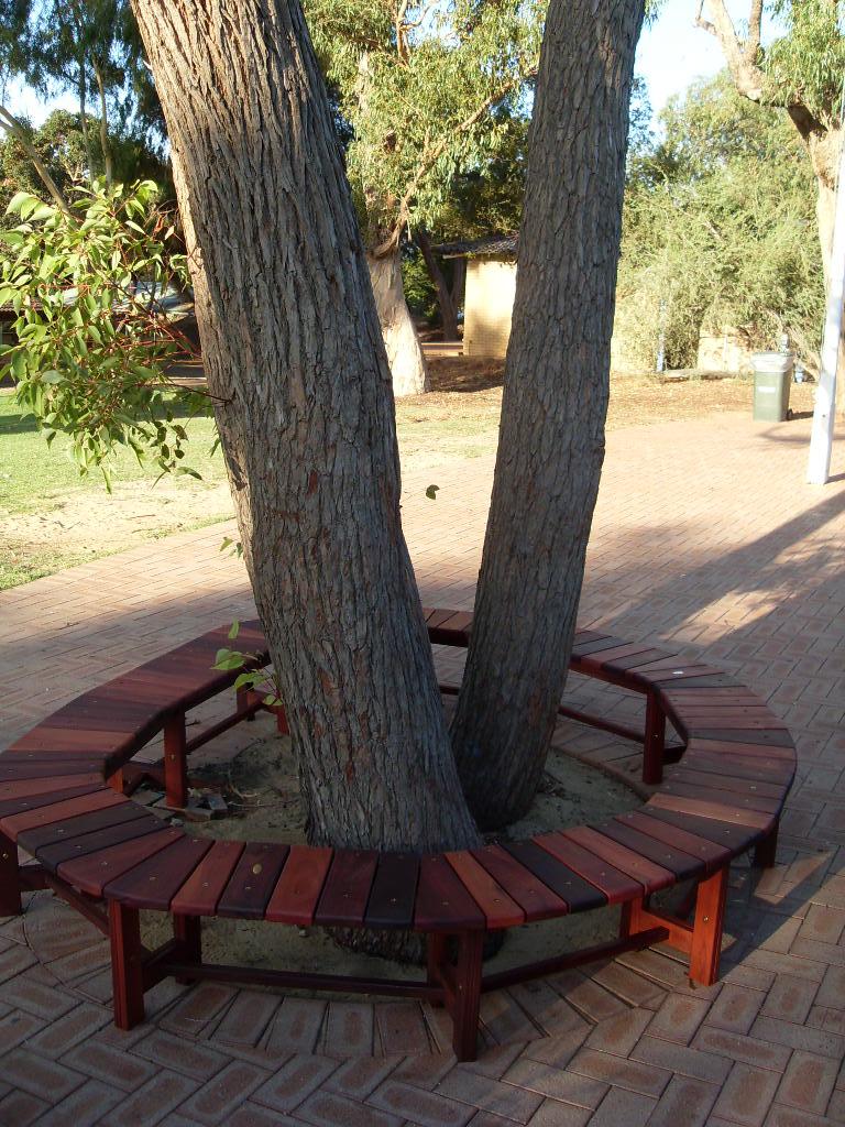 c33 Tree bench 4.JPG