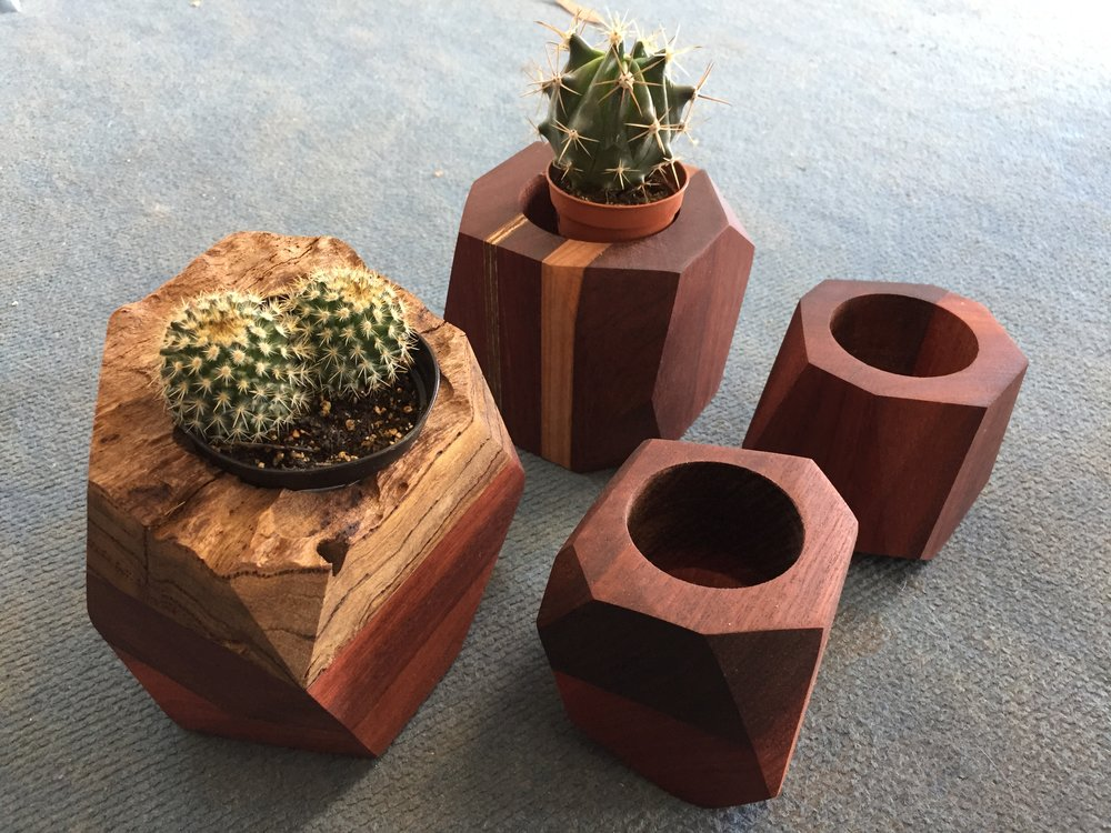 Cactus/ air plant  planters mixed timbers