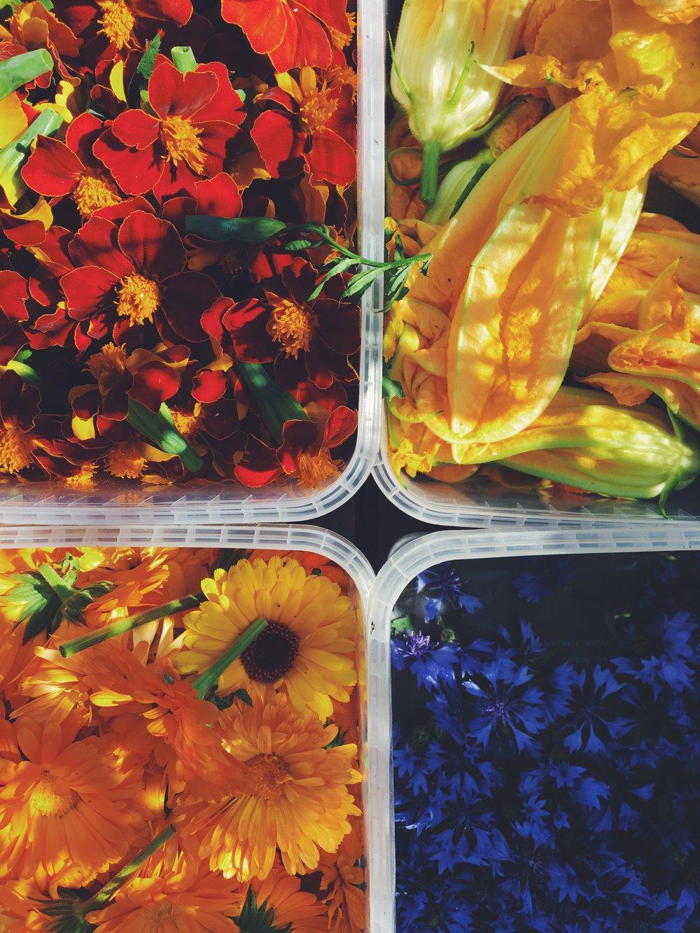Spiselige blomster - Læs om deres pryd og nytte