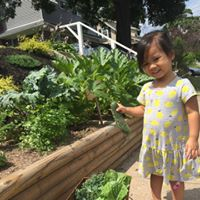 People all around the metro area are transforming their sidewalk-adjacent yards into vegetable gardens growing healthy food for all passersby to stop and pick for free.  (Photo Credit: Cristina Rosadia Bondoc).