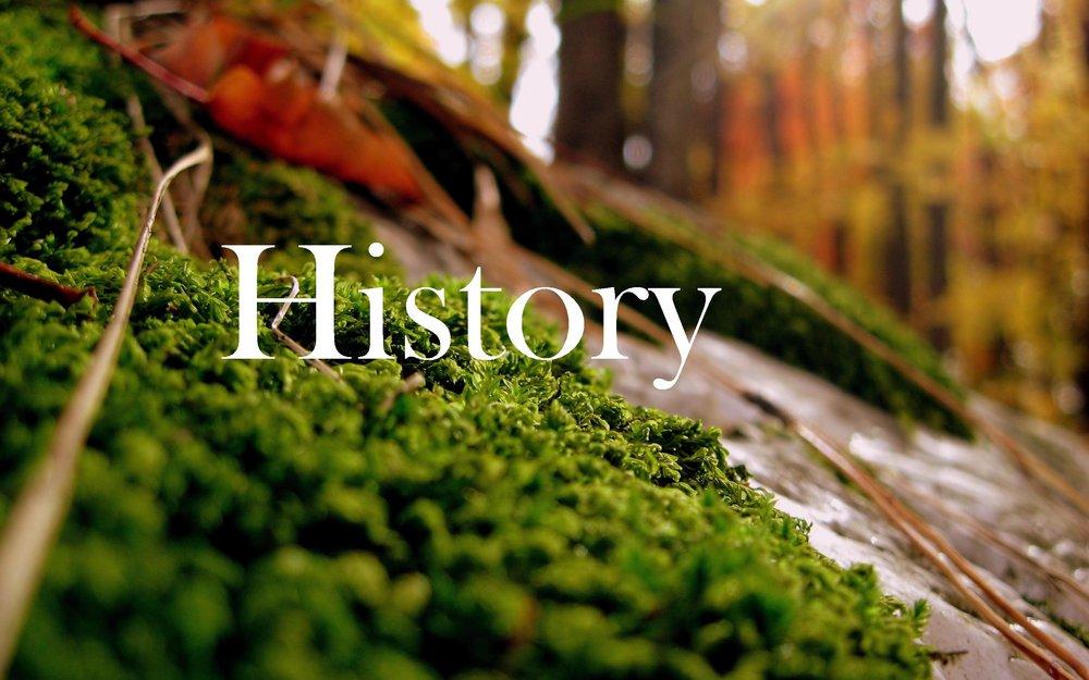 tesol history.jpg
