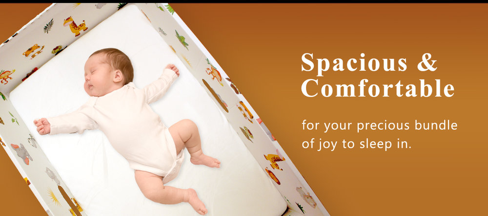 dream-baby-box-BIG--banner-01.jpg