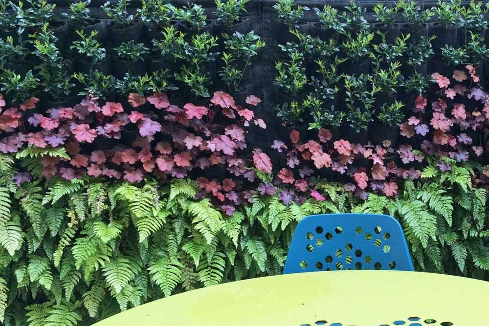 Planting_0428.jpg