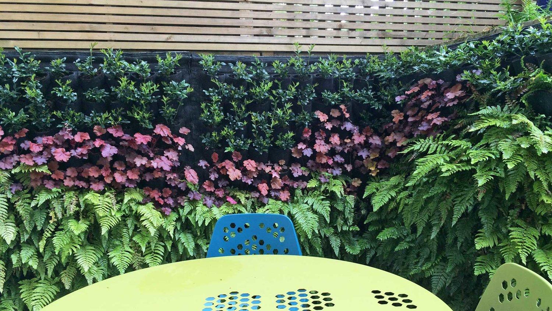 Cat Datta Garden Design on herb landscaping, herb garden clip art, herb garden design plans, herb garden layout design, herb container gardens, herb garden ideas, herb garden planning, herb garden design software, herb knot garden design,