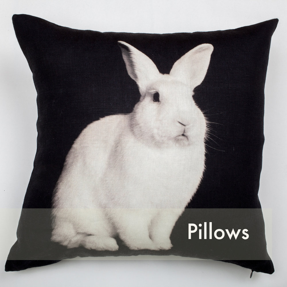 IMG_9644 pillows.jpg