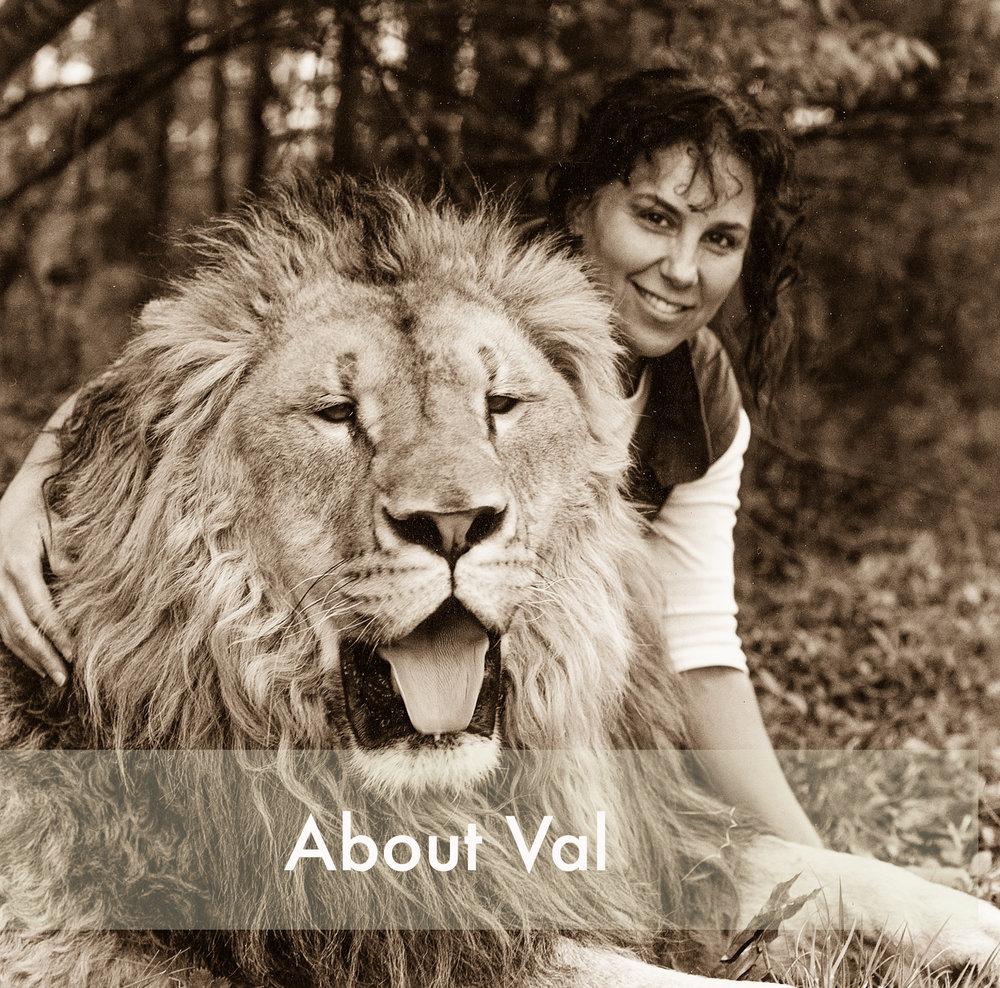val&lion2_1 FINAL.jpg