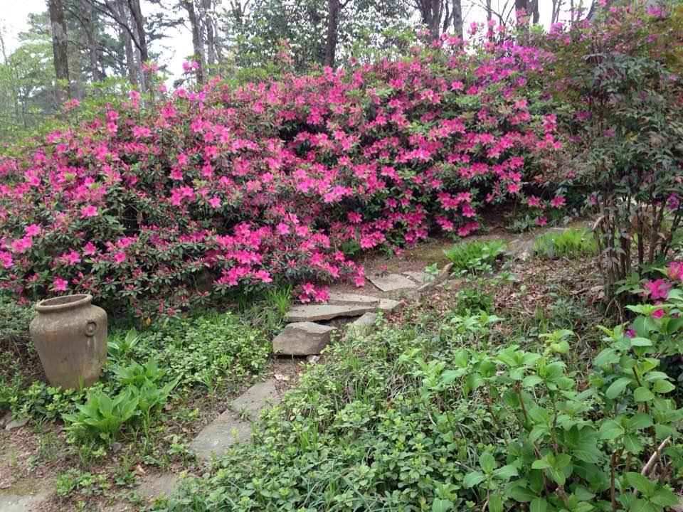 Ann Gornatti's Secret Garden