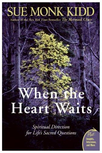 when-the-heart-waits.jpg