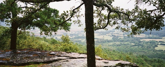 Petit Jean Mountain, where poetry lives