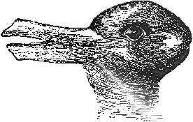 rabbit or duck.jpeg