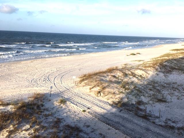 road to beach copy.jpg