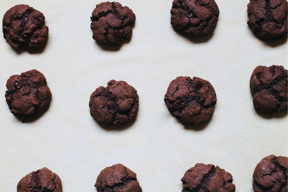 pan+of+chocolate+chookies.jpg