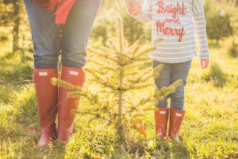 hunter boots christmas tree