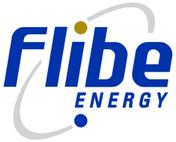 www.flibe-energy.com