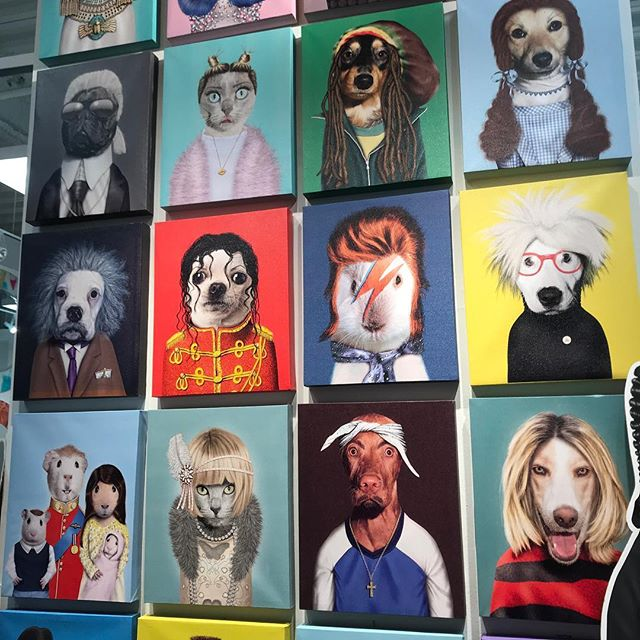 """PETS ROCK available at our showroom in Palm Springs. These hilarious celebrity """"portraits"""" are just $45 each. Our customers love them!"""