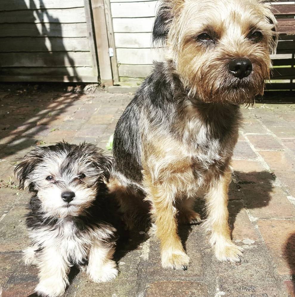 Rory & Baxter