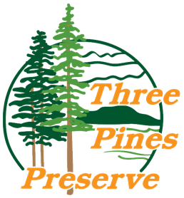 Florida Quail Hunting | Florida Pheasant Hunting | Three Pines Preserve