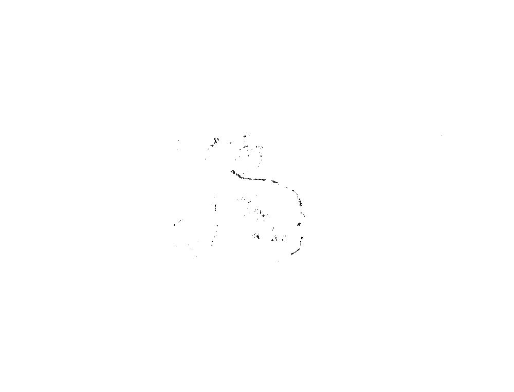 Sox4cKO organoidsize 07122016 120hr__s19.png