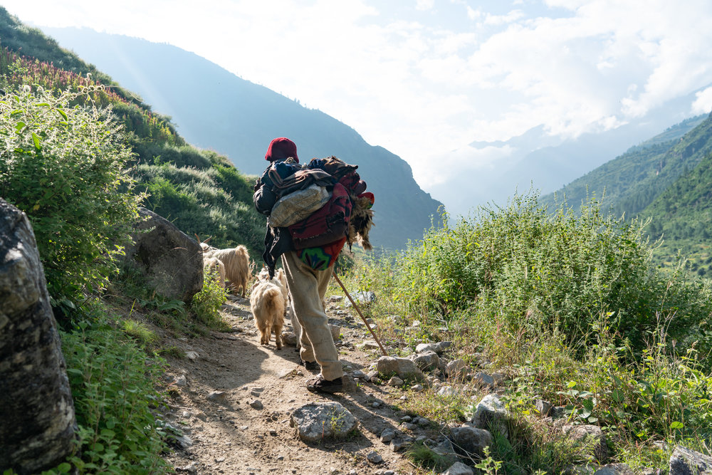 Its just you, goat herders, horses, yaks, and nomads on the trail.