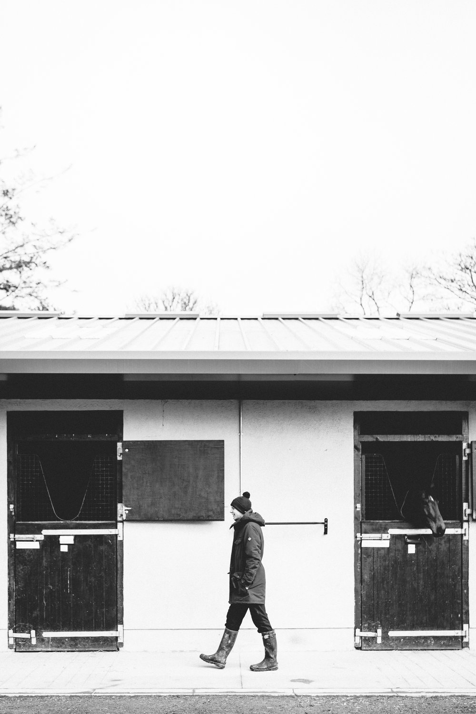 joseph o'brien horse trainer photoshoot.jpg