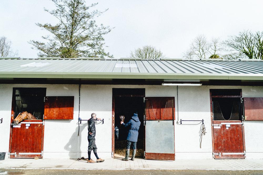 Joseph O'Brien horse trainer equestrian photography.jpg