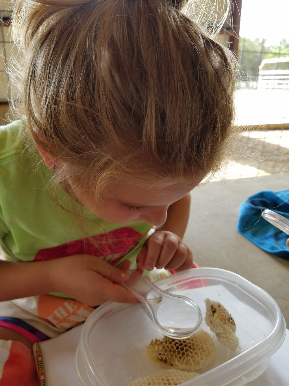 How often do you get a chance to check out what honey comb looks like up close and in person under a magnifying glass? The children at Wildlife Explorers got to do just that before making sure to document their findings in their journals.
