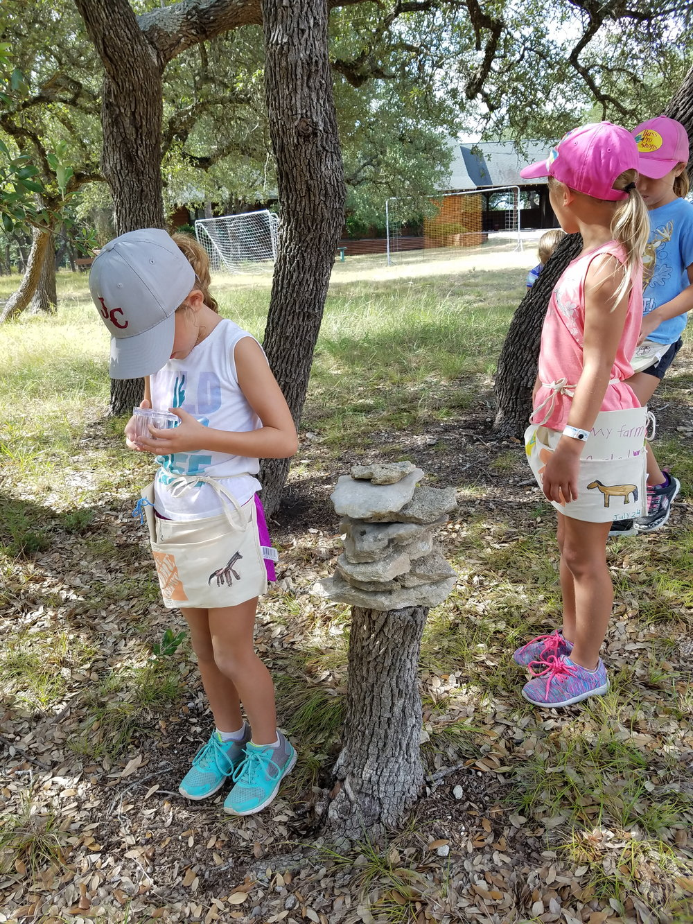 Bugs like to hide up high and down low, so the children carefully searched for all of their favorite hiding spots.