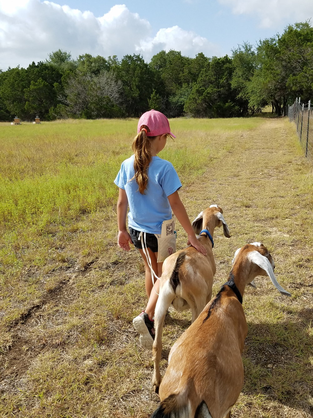 This is what happens when children have a chance to get outside and and just be among nature. They connect with the animals and their surroundings in a whole new way.