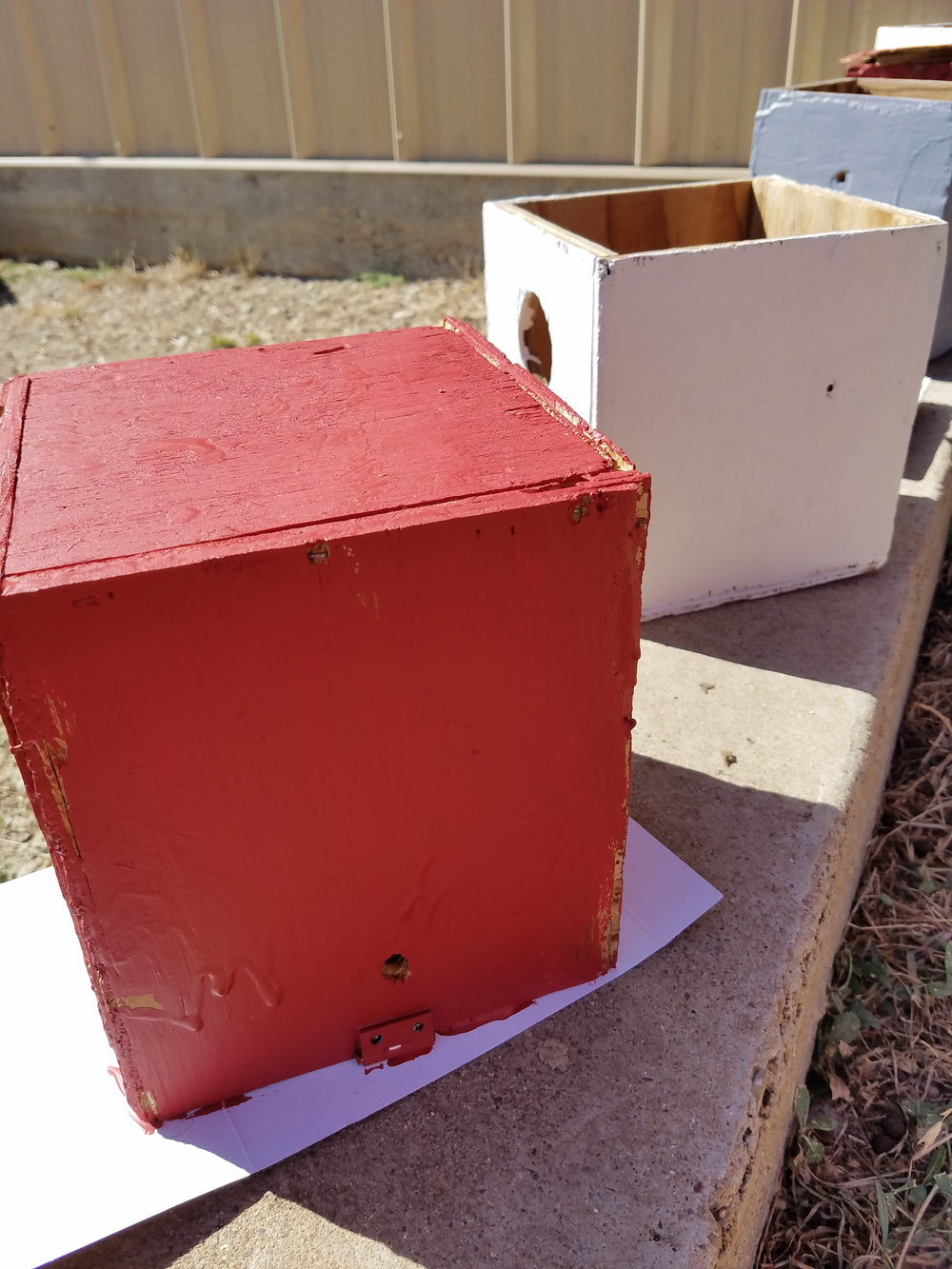 Thankful for the Texas heat so that the base coats could dry fast on the birdhouses.
