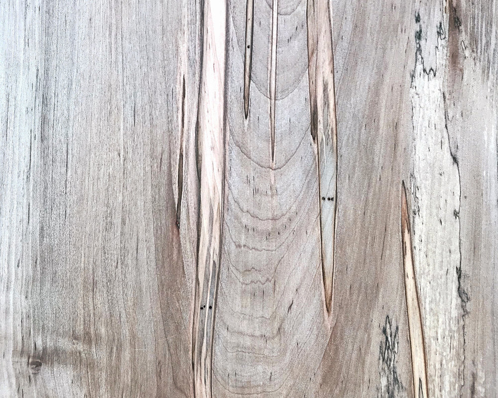 Design Primer: Ambrosia Maple | Design Confetti