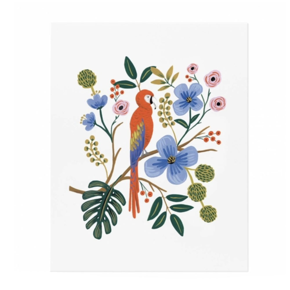 Macaw Print, $24