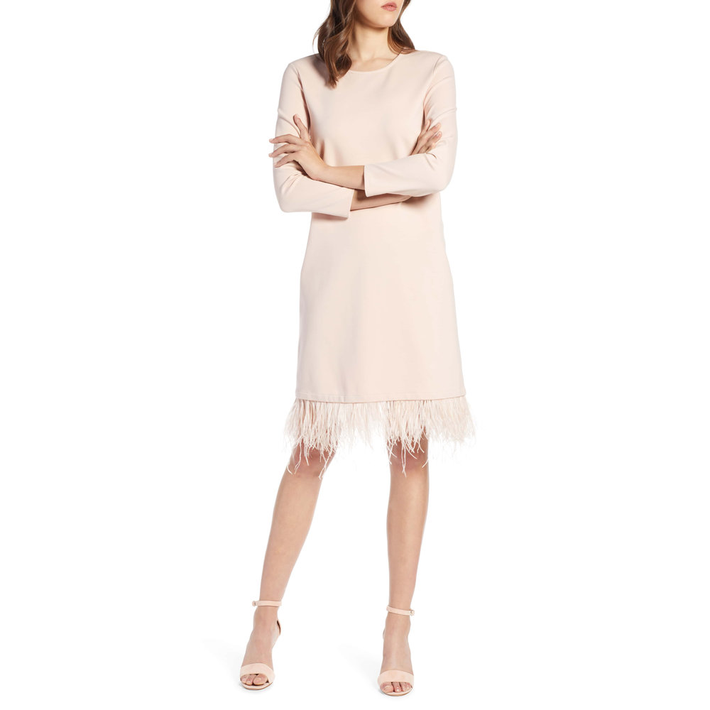 Halogen Ponte Feather Trim Shift Dress,Nordstrom, $129 -