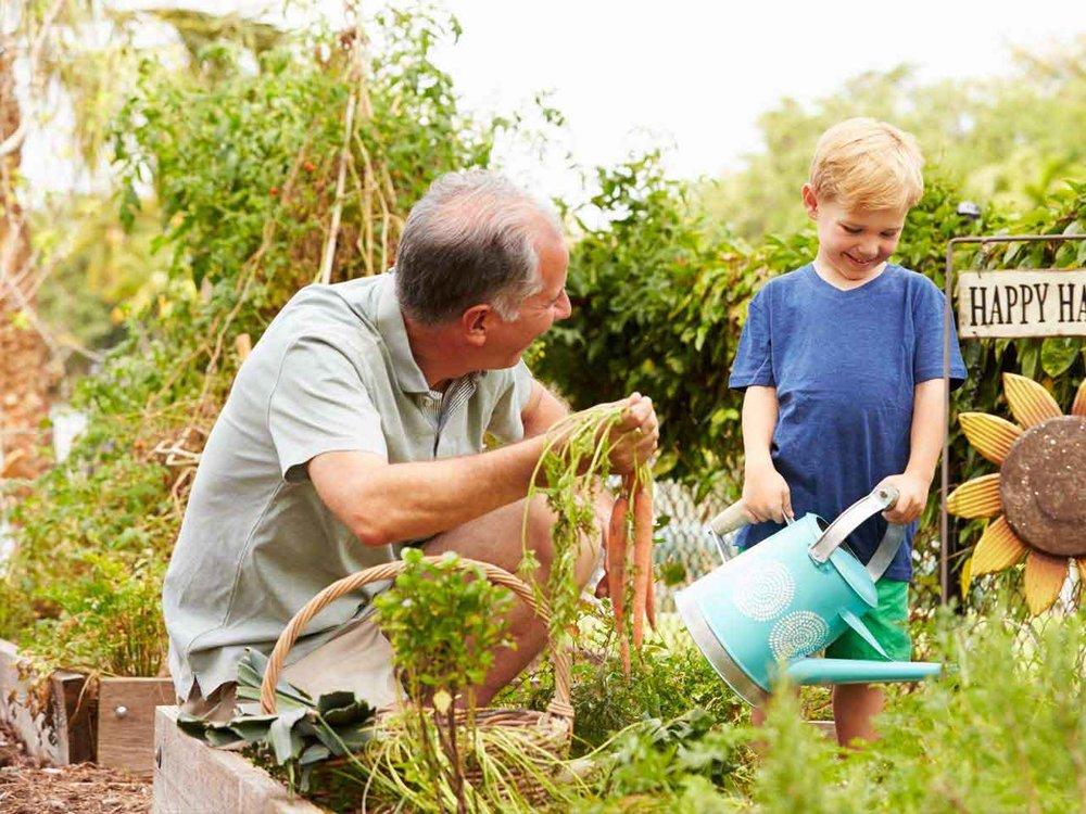Verse groentjes uit de tuin