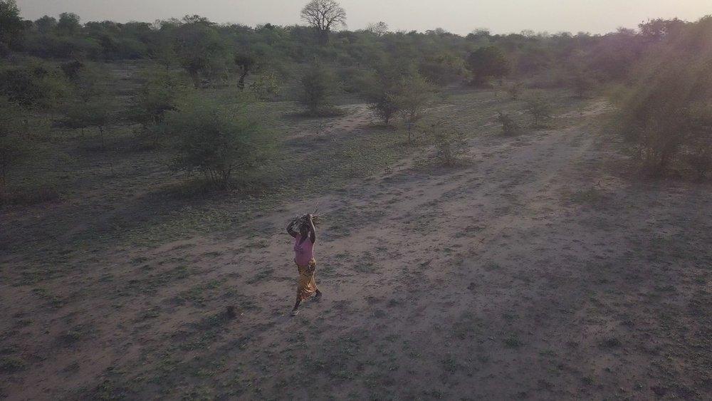 malawi%20gendered%20climate%20change%20impact%20lede.jpg