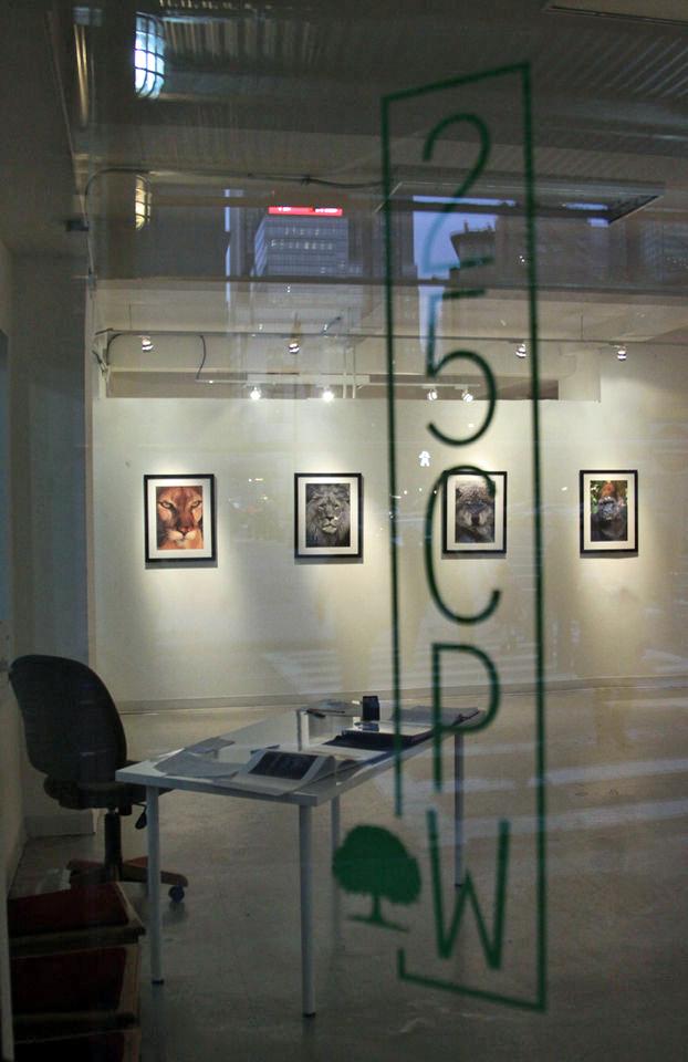 Solo Exhibition, 25 Central Park Gallery, NYC