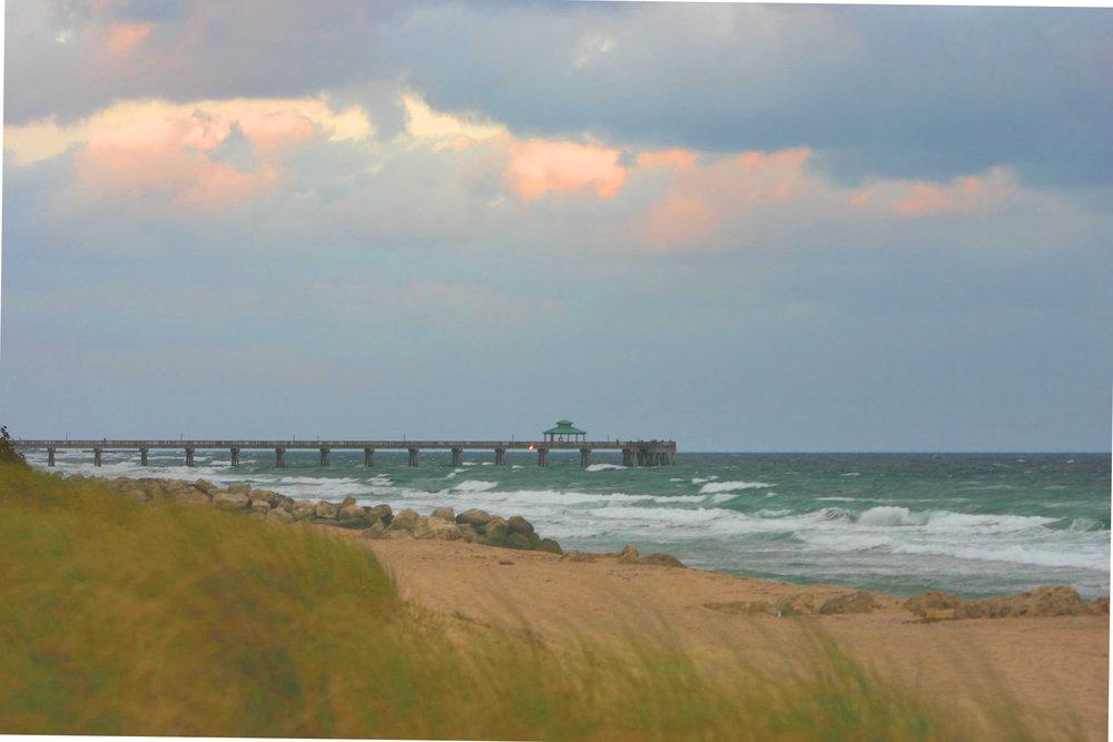 47 Pier through Sawgrass 2.jpg