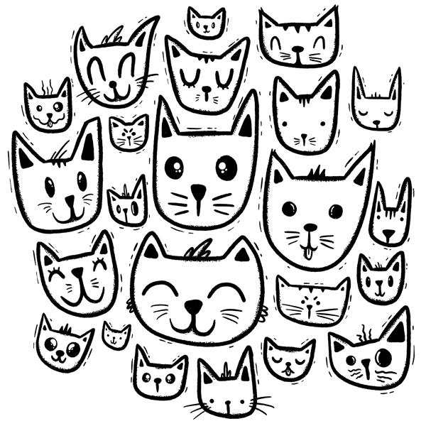 20181106_Meow.jpg