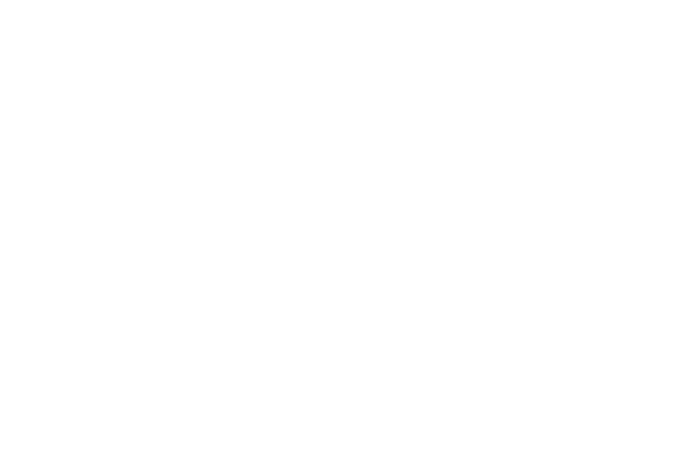 Commerce Logo.png