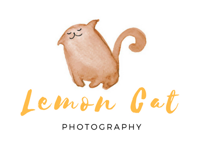 Lemon Cat Photography