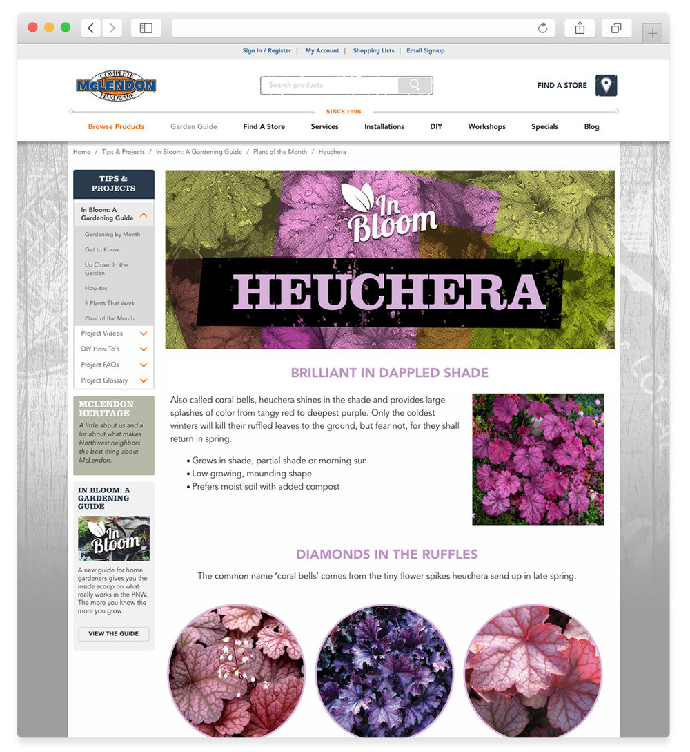 In Bloom: Plant of the Month Page (rotates monthly)