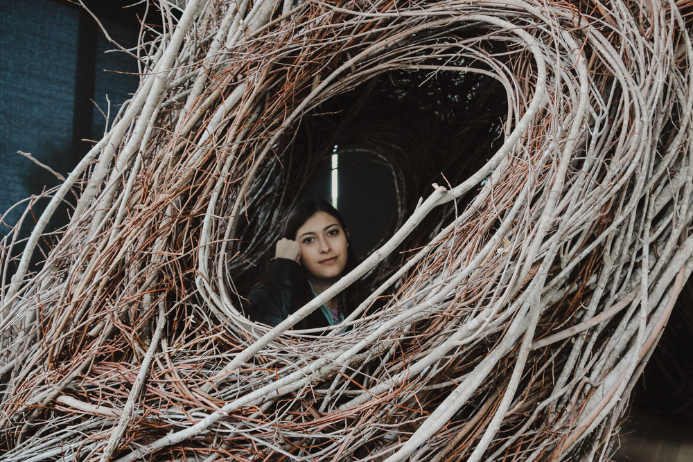 A photo my mom took of me in the amazing art installation in the museum created over 3 weeks with branches.
