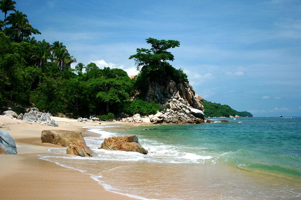 Volador_Profile_beach.jpg