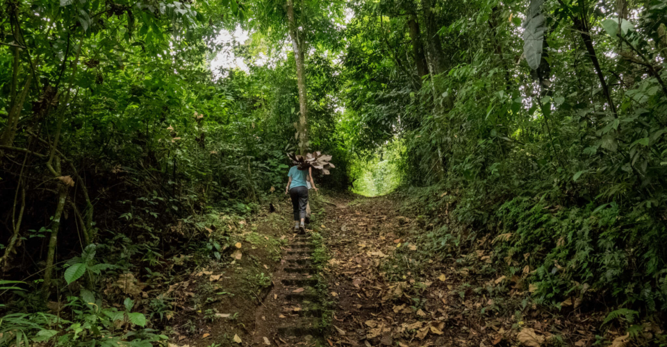Cabolonga Trail Tour -