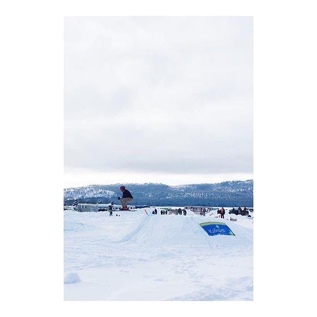 Neighborhood Skijoring @rebeccafarm