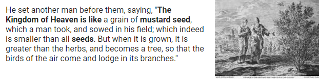 Mustard_Seed.png
